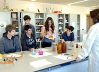 Laboratorio IV sección