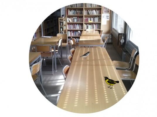 Biblioteca III Seccion