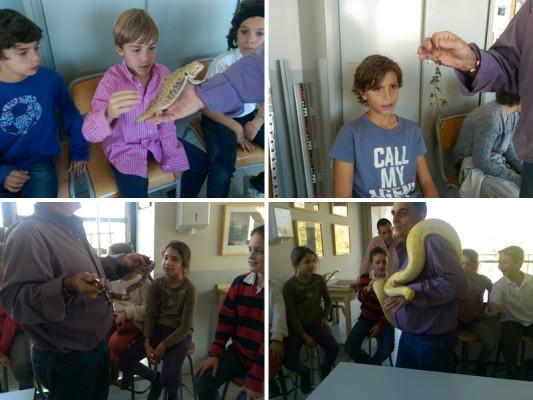 Taller de anfibios y reptiles: contrastando el aprendizaje del aula con la experimentación