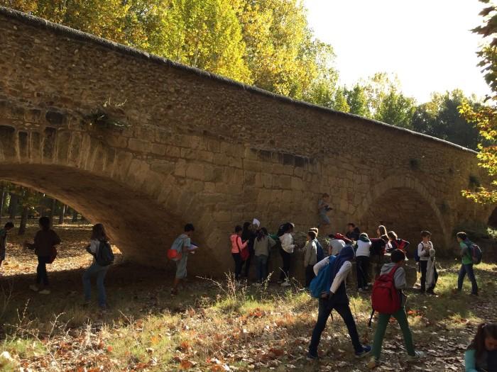 Clases X: Excursión a Talamanca de Jarama