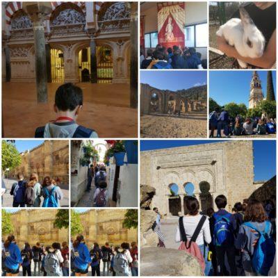 CLASES 13: Córdoba Califal