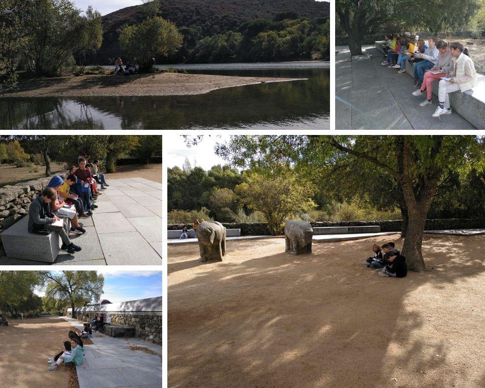 CLASES 12: Visita Toros de Guisando