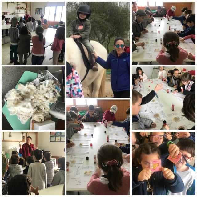 Clase VI: Visita a la Granja Escuela «Albitana»