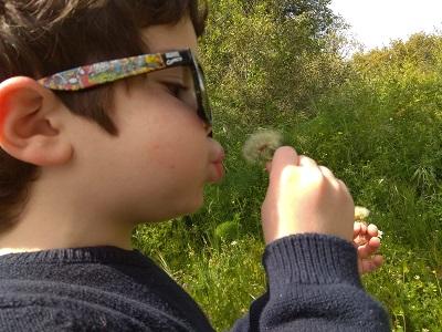 INFANTIL: Recomendaciones para disfrutar las salidas con los niños