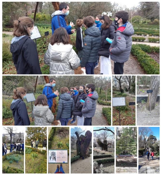 Clase X: Real Jardín Botánico de Madrid